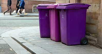 Liverpool's Purple Bins